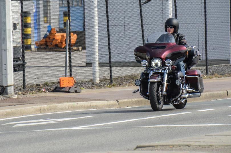 DVM 2019 Antwerpen-7903